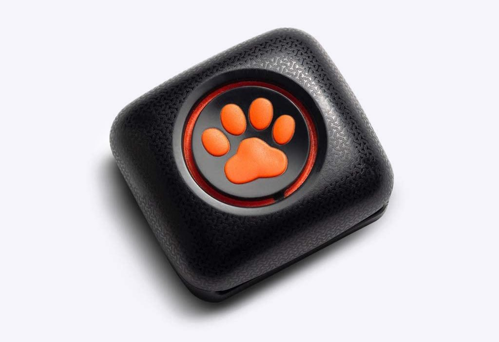 PitPat Dog Activity Monitor Device